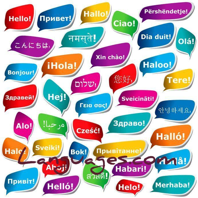 Learn forex language translator
