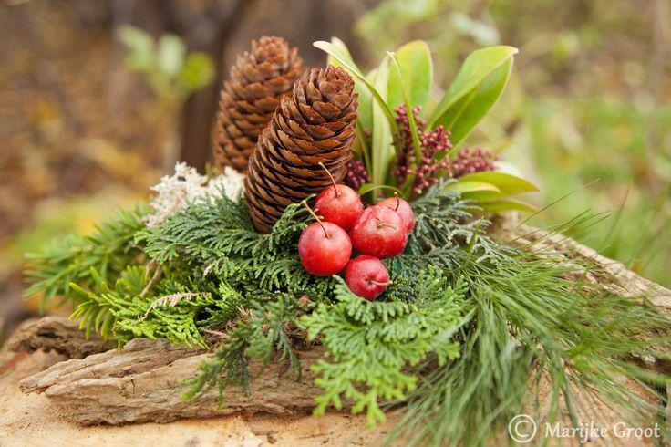 Bodegraven - Gezellig op een middag kerststukjes maken. En dat kan op ...