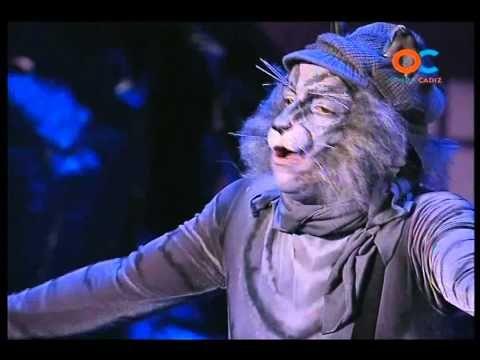 ▶ Comparsa - Los Gatos Callejeros   PRELIMINARES   Actuación Completa   Carnaval 2013 - YouTube