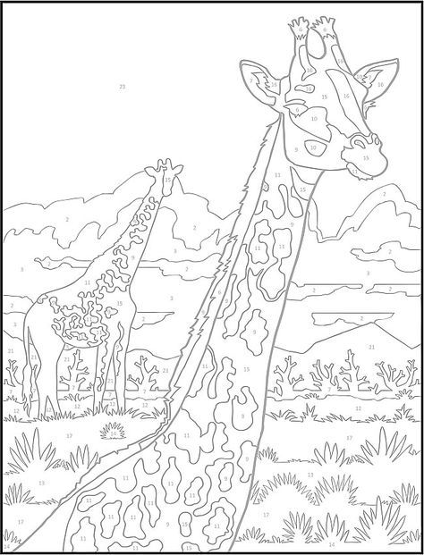 Giraffe...Creative Haven Wildlife Color by Number Coloring Book ...