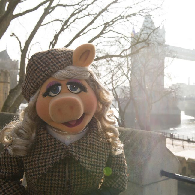 241 Best Muppet Greatness Images On Pinterest: 162 Best Miss Piggy Images On Pinterest