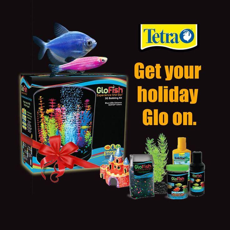 Christmas Lights Shark Tank: 70 Best Images About GloFish On Pinterest