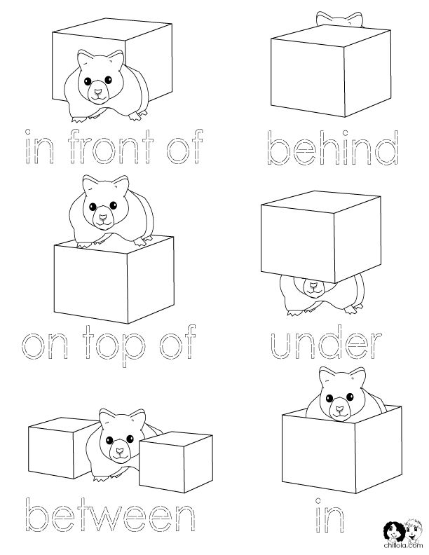 Worksheet Preposition Next To Kindergarten Worksheet 50 best maths prepositionspositional language images on position words worksheets for kindergarten