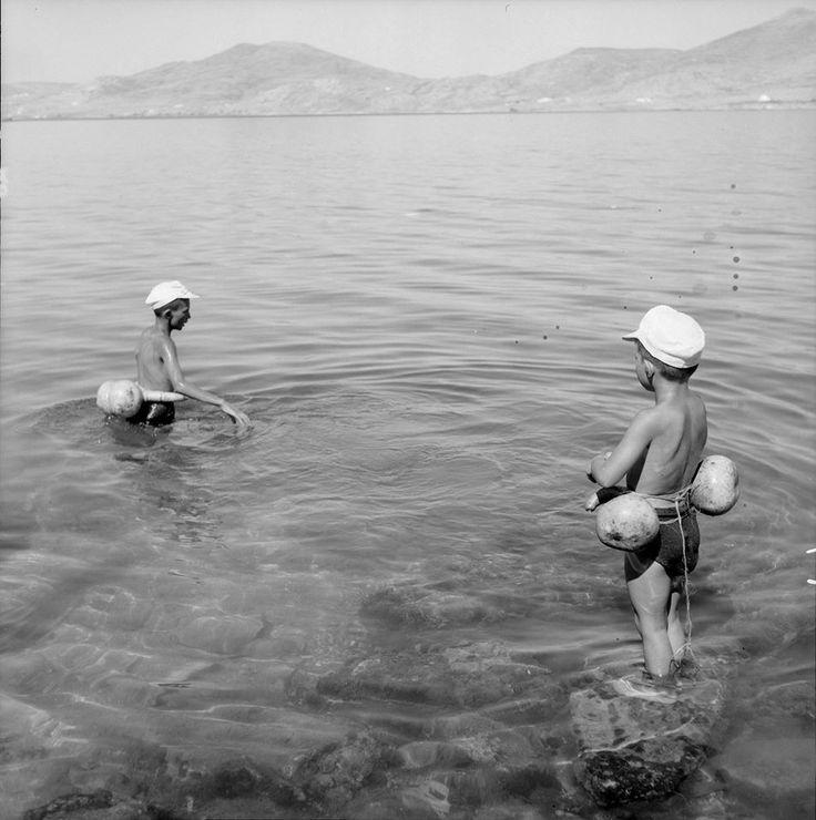 Νεροκολοκύθες για σωσίβιο Summer_Φωτογραφία του Ζαχαρία Στέλλα. Αρχείο Μουσείου Μπενάκη