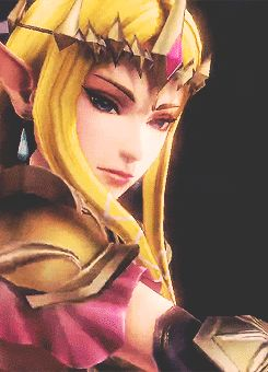 Hyrule Warriors Zelda GIF