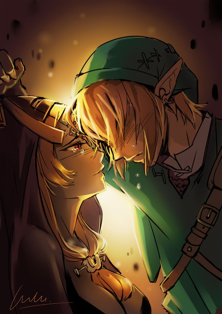 The Legend of Zelda: Twilight Princess / Link and Midna
