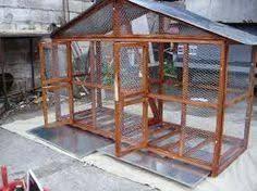 Image result for jaulas grandes para aves caseras