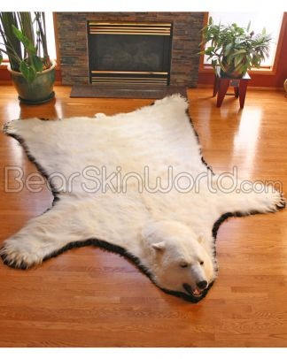 Polar Bear skin rug, and I'm not going to lie, I want it