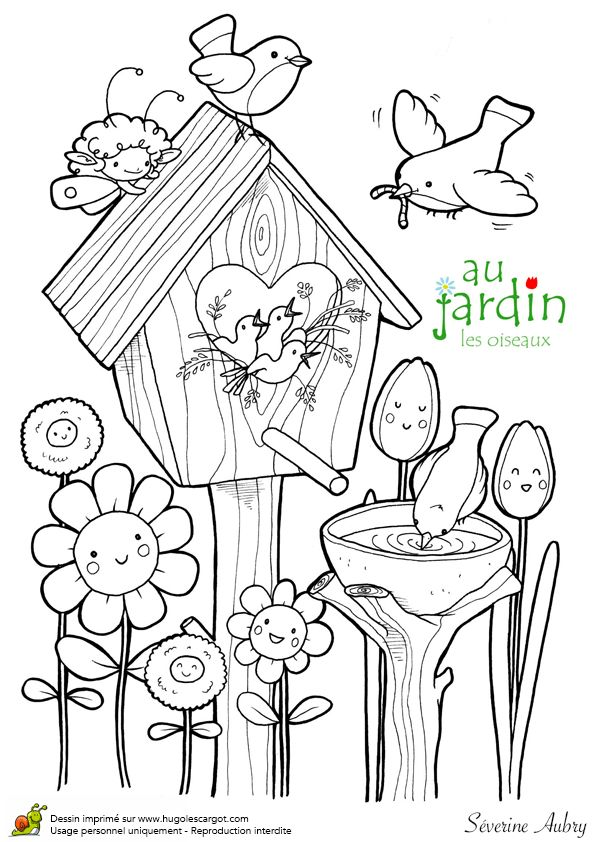 Beau dessin à colorier des petits oiseaux dans le jardin et de Maya, l'abeille