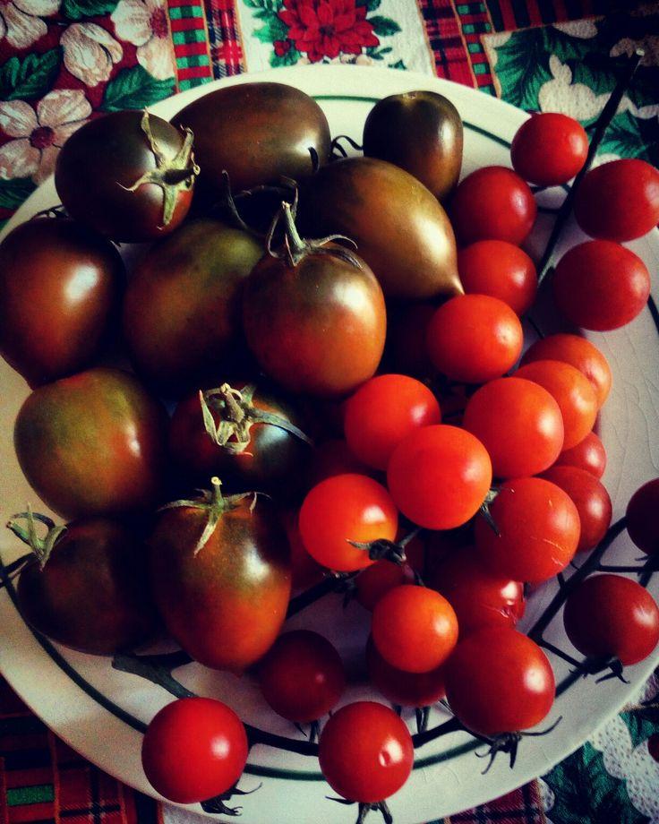 Ode al pomodoro 🍅🍅🍅