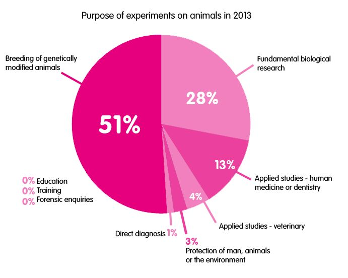 Purpose of experiments on animals in 2013.  Link to facts and figures on animal testing from Cruelty Free International.