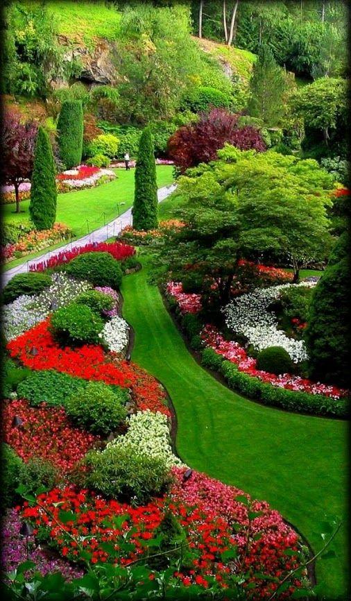 lindo u jardines
