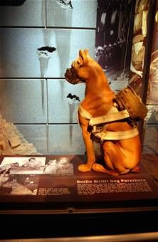 "This parachute was specially made for ""Vittles,"" a dog that flew 131 missions with his owner, 1Lt. Russ Steber, during the Berlin Airlift. Gen. Curtis LeMay named the dog and ordered the parachute made for him. Vittles, a boxer, accumulated around 2,000 flying hours, but never had to use the parachute. His owner, Lt. Steber, did have to bail out of a C-47 over the Soviet zone on one occasion, but Vittles was not with him on that trip. Steber was captured and returned to the West a few days la..."