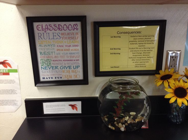 6th Grade Science Classroom Decorations : Th grade science classroom rules