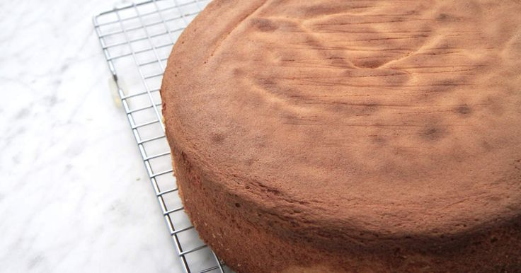 Tårtbotten - se & gör | Recept från Köket.se