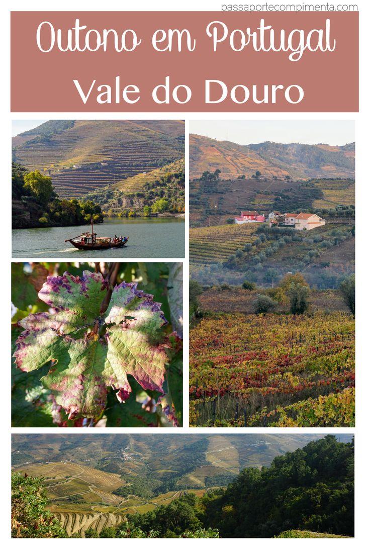 O Vale do Douro em Portugal é uma das principais regiões vinícolas do país. Linda em qualquer época do ano, ela fica ainda incrível no outono. Rodamos a região de carro.
