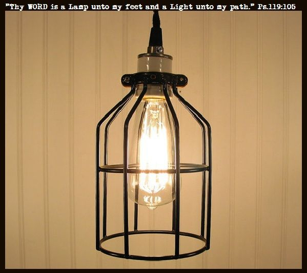 Cage pendant light 25 pinterest industrial cage pendant light with edison bulb mozeypictures Gallery