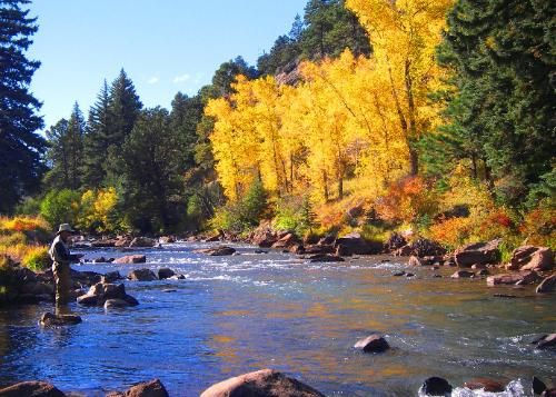 18 best images about fly fishing it 39 s a lifestyle on for Best fishing spots in colorado