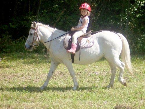 Balade en poney - Espace ludique du Col de Marcieu