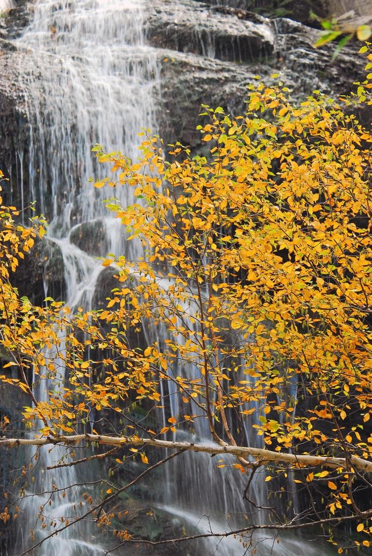 Bridal Vail Falls, Spearfish Canyon, in the #BlackHills of #SouthDakota