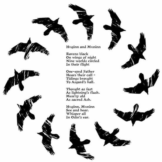 Huginn and Muninn--circling the world to bring back news to Odin #Viking #mythology
