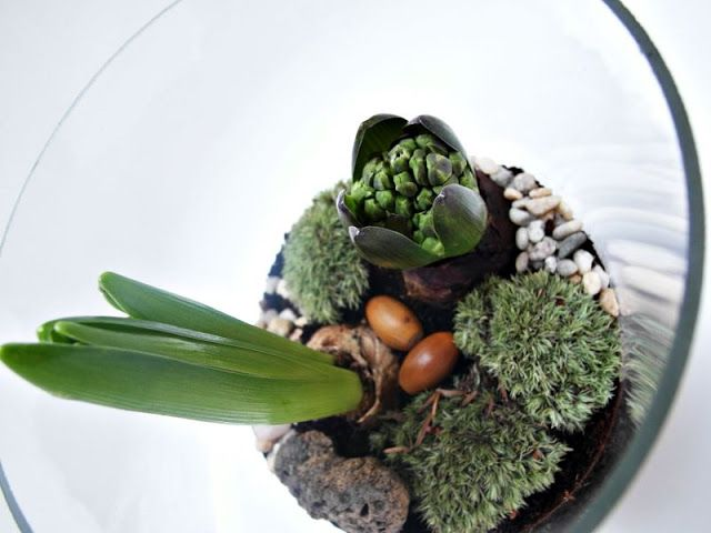 Pomysłowy ogród: Spring composition in glass
