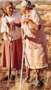 Image result for IMAGES FROM RABBIT PROOF FENCE