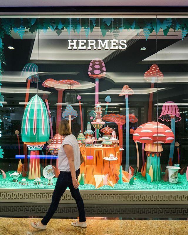 Mushroom garden #HermesMOE #Hermes                                                                                                                                                                                 More