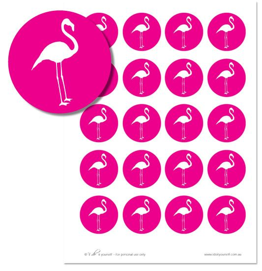 Flamingo Alice party