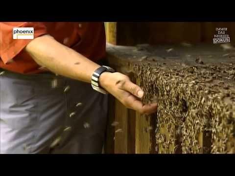 der untergang der bienen die rache der sch pfung teil 3. Black Bedroom Furniture Sets. Home Design Ideas