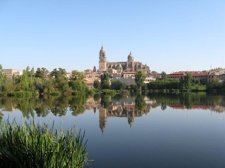 Vista de la catedral desde el Tormes