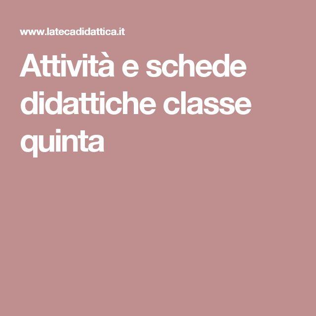 Attività e schede didattiche classe quinta