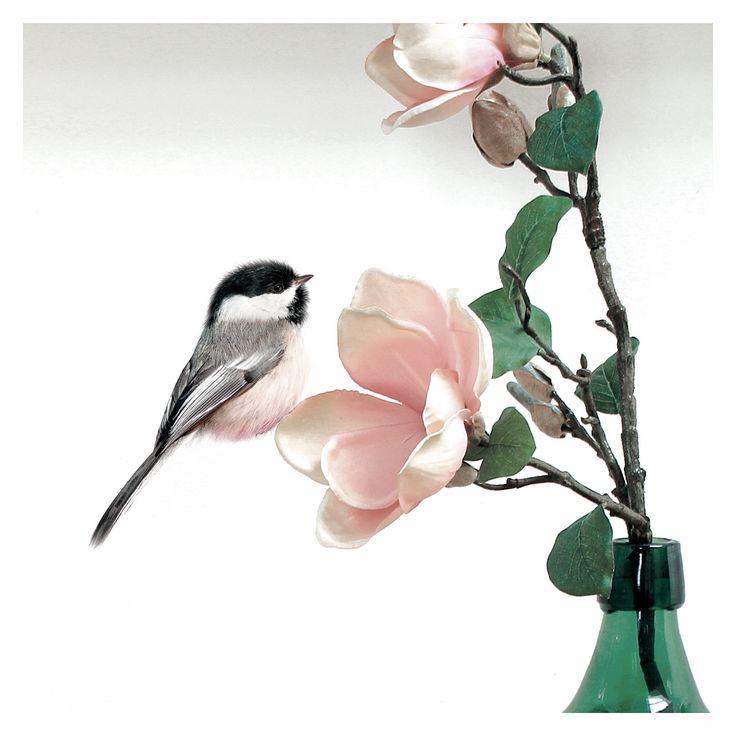 Mit kaum etwas anderem holt man sich den Frühling besser ins Haus als mit bunten Singvögeln.  Die wahnsinnig putzigen Wandsticker von KEK Amsterdam gibt es natürlich bei uns! Unser Produkt der Woche: flinders.de/kek-amsterdam-birds-set-wandsticker Mehr tolle Wandsticker findet Ihr hier: flinders.de/kek-amsterdam