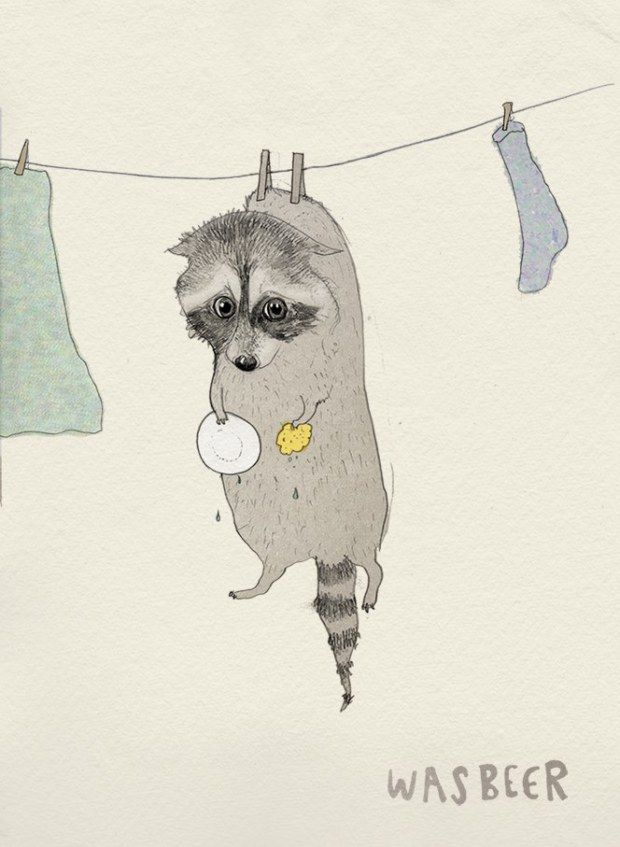 """#learningdutch Wasbeer - Racoon, literally translated to """"wash bear"""". Courtesy of Laura Frame Illustration."""