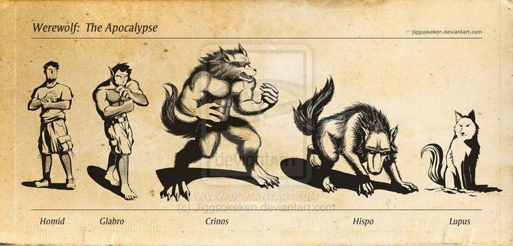 Jovem Lobo: Formas de Lobisomens