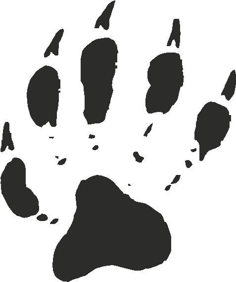 Raccoon Paw Print - Left Side of Collar Bone (Over Heart)