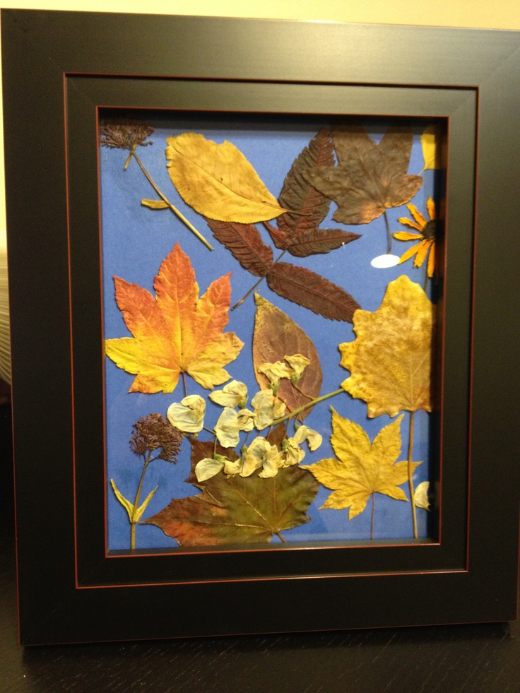 Perfect art project for fall. The kids and I picked pretty leaves and flowers around our neighborhood. I dried and pressed the leaves and flowers in a book between some wax paper for a few weeks. Finally I put glue on the leaves while the kids took turns placing them on a piece of simple construction paper. Finished it off with a nice frame from Costco and voila .... lasting works of art. I actually have two others hanging in my hall from last season that we made and this one we made as a…