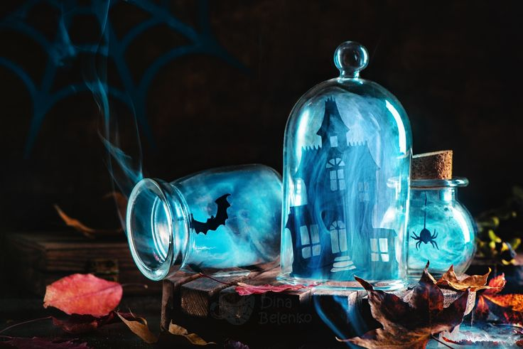 "Souvenirs from haunted mansion - On <a href=""https://instagram.com/dinabelenko""> my Instagram page</a> you can find the most recent photos and work in progress, check it out :)"