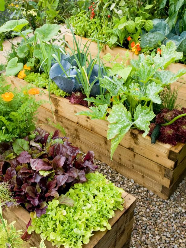 86 Best Images About Raised Garden Beds On Pinterest