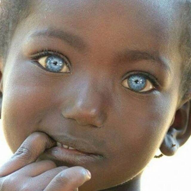 240 best images about natural blue eyed africans on