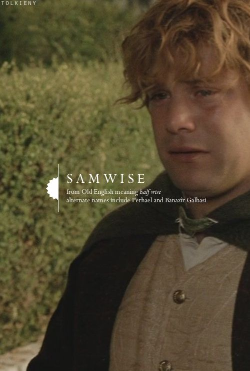 Tolkieny (this one is special to me because I noticed he hadn't been done and requested it...made me so happy! Samwise shouldn't be forgotten)