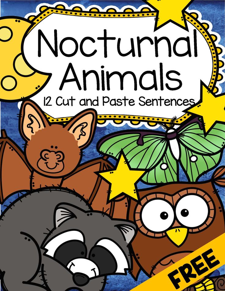 how are nocturnal animals able to Name - date - nocturnal animals fact finding homework in the next few weeks we will be finding out about nocturnal animals and writing.
