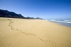 Die Kanaren sind mit ihren ganzjährig milden Temperaturen ein beliebtes Winterreiseziel der Deutschen. Zudem befinden sich auf den Kanarischen Inseln einige der schönsten Strände von ganz Spanien.