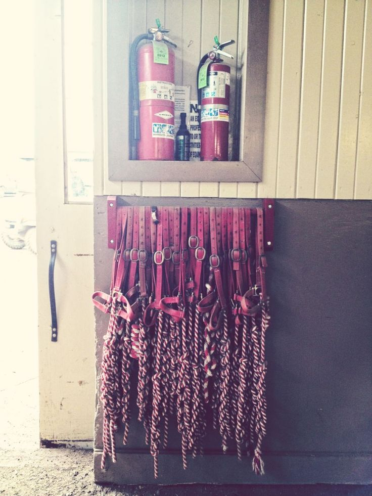 I have put up a pin on fire halters before but fire safety in the barn cannot be overemphasized.