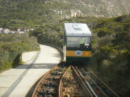 Cape Point funicular day out