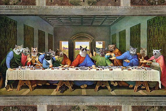 Teh Last Suppr Lolcat ...