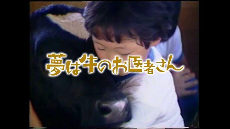 映画『夢は牛のお医者さん』予告編  1987年、新潟県にある9人しか児童のいない小学校にやって来た3頭の子牛との出会いから、獣医になる夢を抱いた少女の26年間を追ったドキュメンタリー。病気の子牛を世話するうちに、牛のお医者さんになりたいと思い立った少女が初志貫徹し、大学受験・国家試験と目標へいちずに突き進む姿にカメラが寄り添う。獣医という夢に迷いなく向かう少女時代、結婚と出産を経て獣医として活躍する現在と、その厳しい道のりにもめげずに変わらぬ志を貫く彼女の生き方に感動を覚える。  http://wwwn.teny.co.jp/yumeushi/