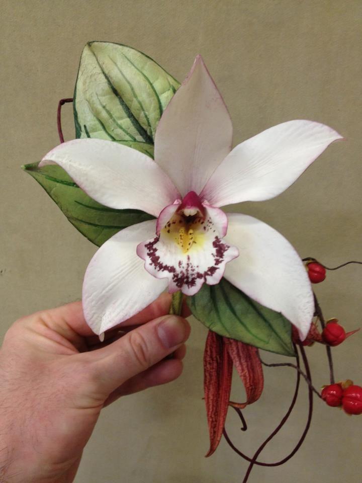 orquidea de asucar