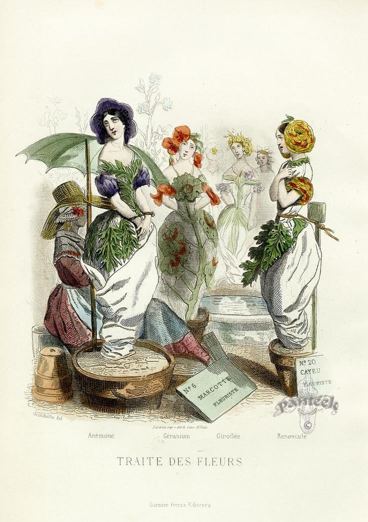 JJ Grandville 'Traite Des Fleurs' Flower Show