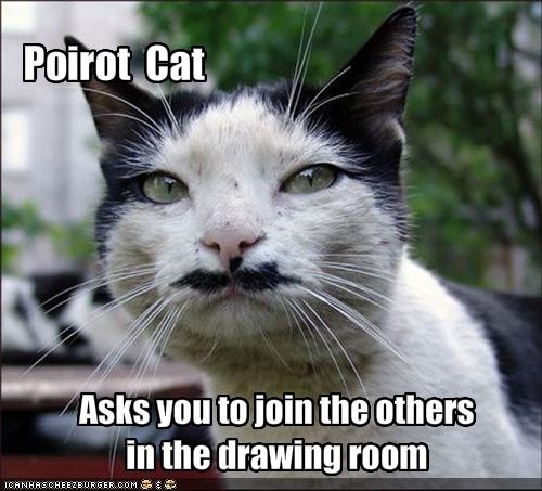 hercule poirot cat